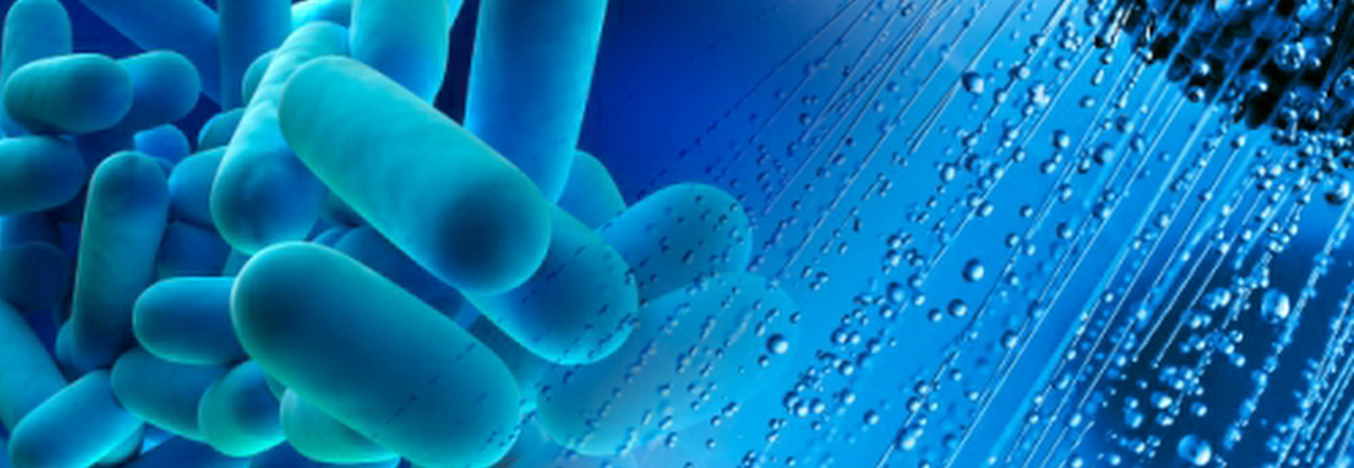 Legionella: Are you covered?